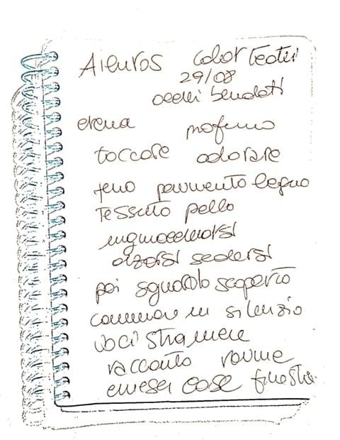 #appuntidiunfestival pt.8: Ailuros & Color teatri