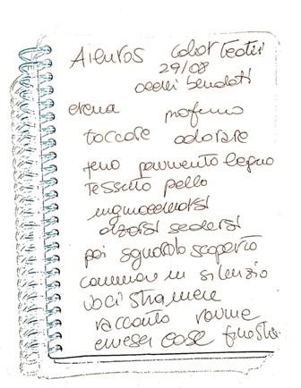 ailuros 2