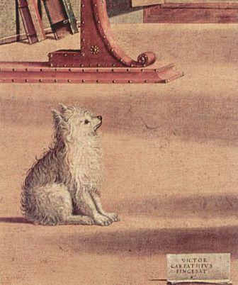cane visione santagostino