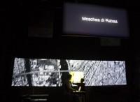 Con i Muta Imago sulle tracce della Primavera Araba: conversazione con Claudia Sorace
