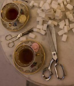 è l'ora del thè - foto di Antonella Trevisan